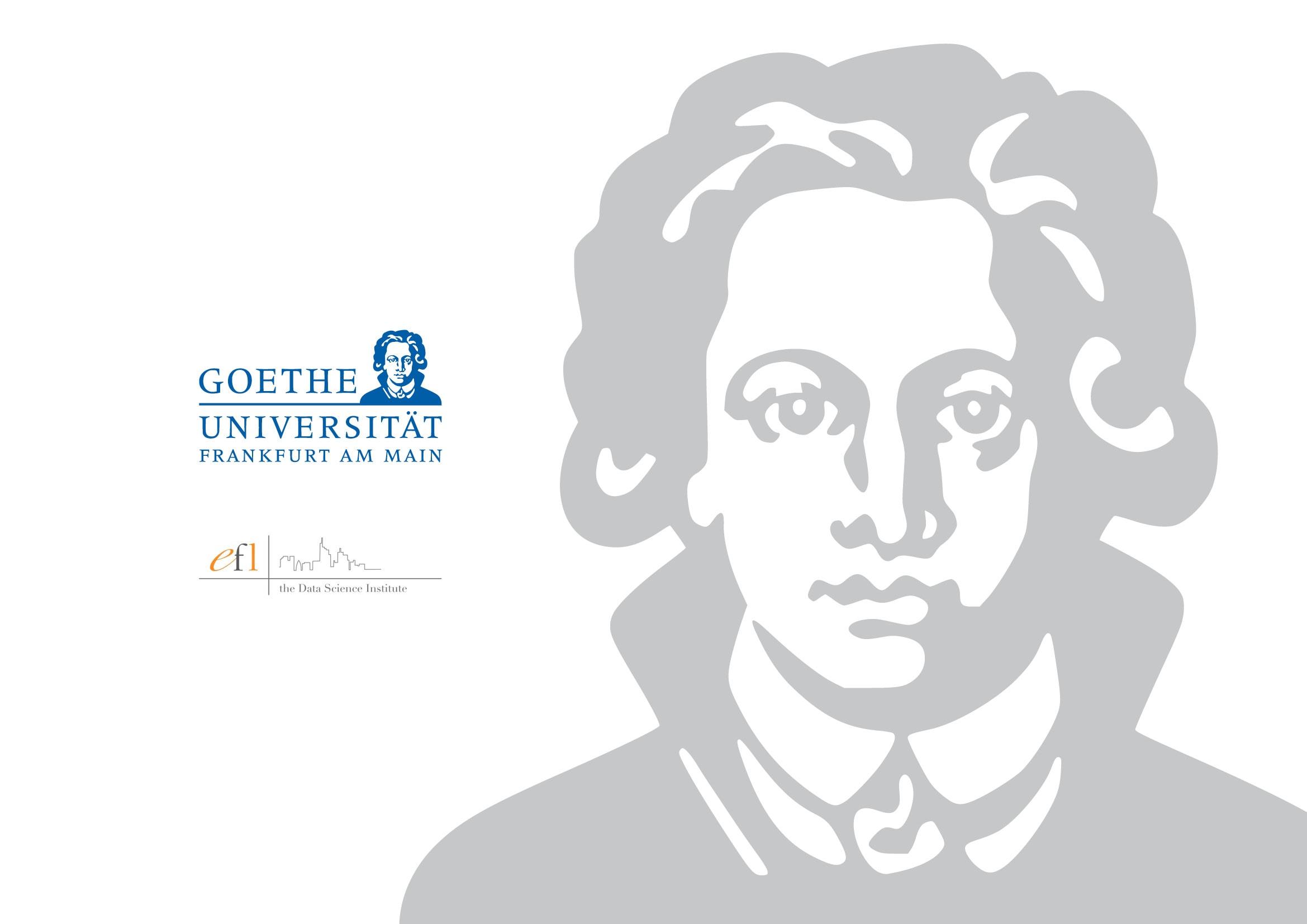 Typo3 Website für E-Finance Lab der Johann Wolfgang Goethe-Universität Frankfurt durch Ronald Wissler Visuelle Kommunikation