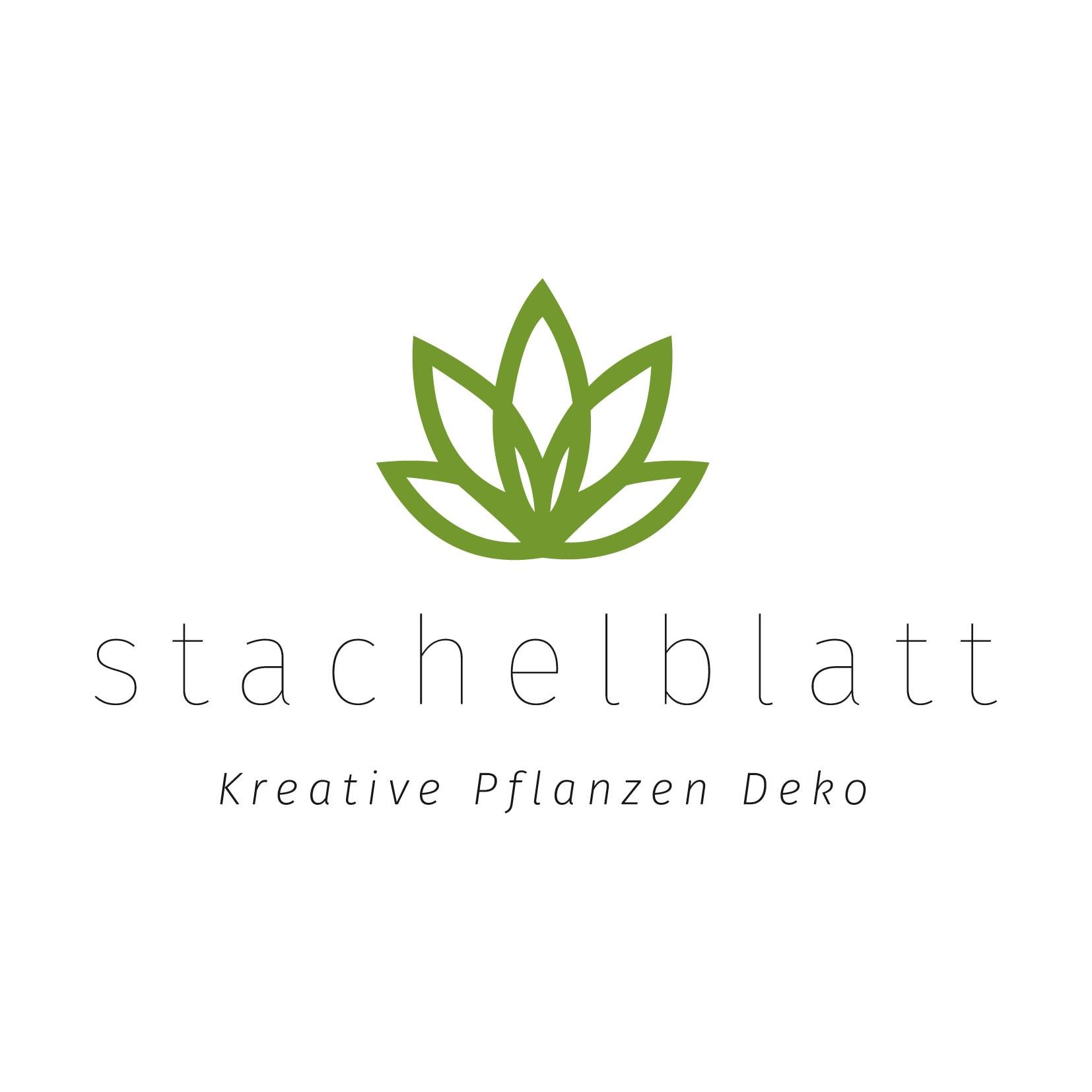 Logoentwicklung für nachhaltige und kreative Pflanzen Dekoration: Logo Stachelblatt