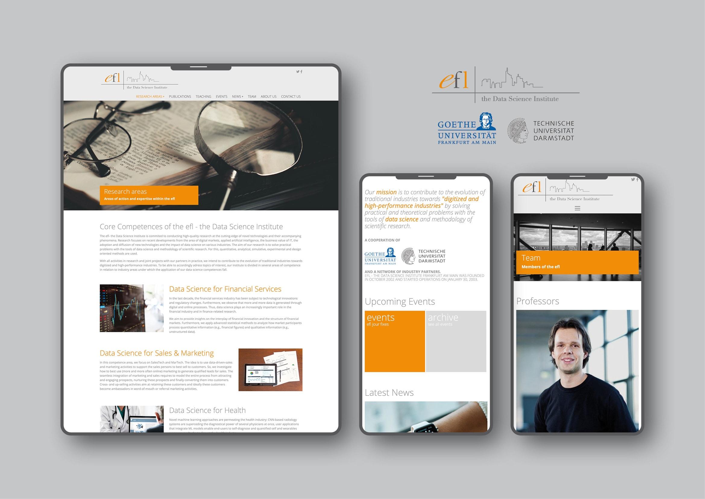 Entwicklung Typo3 Website für E-Finance Lab der Johann Wolfgang Goethe-Universität Frankfurt durch Webdesigner Ronald Wissler