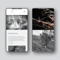 Webdesign und technische Umsetzung Homepage für Fotografin Julia Klaus durch Webdesigner Ronald Wissler Frankfurt